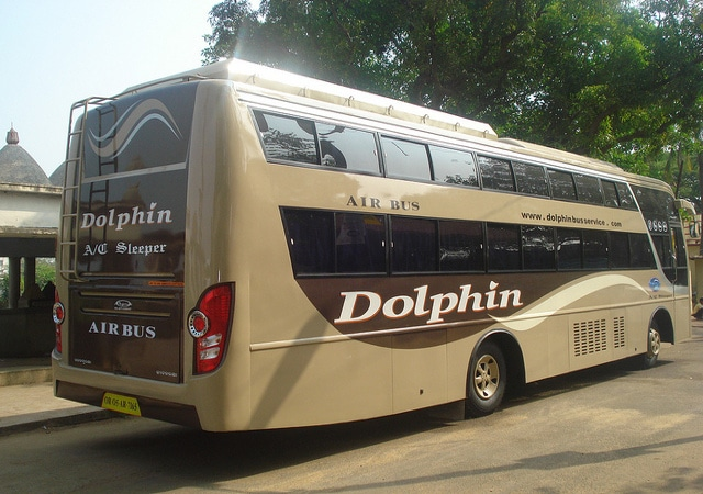 Dolphin Travels Osmanabad Contact Number